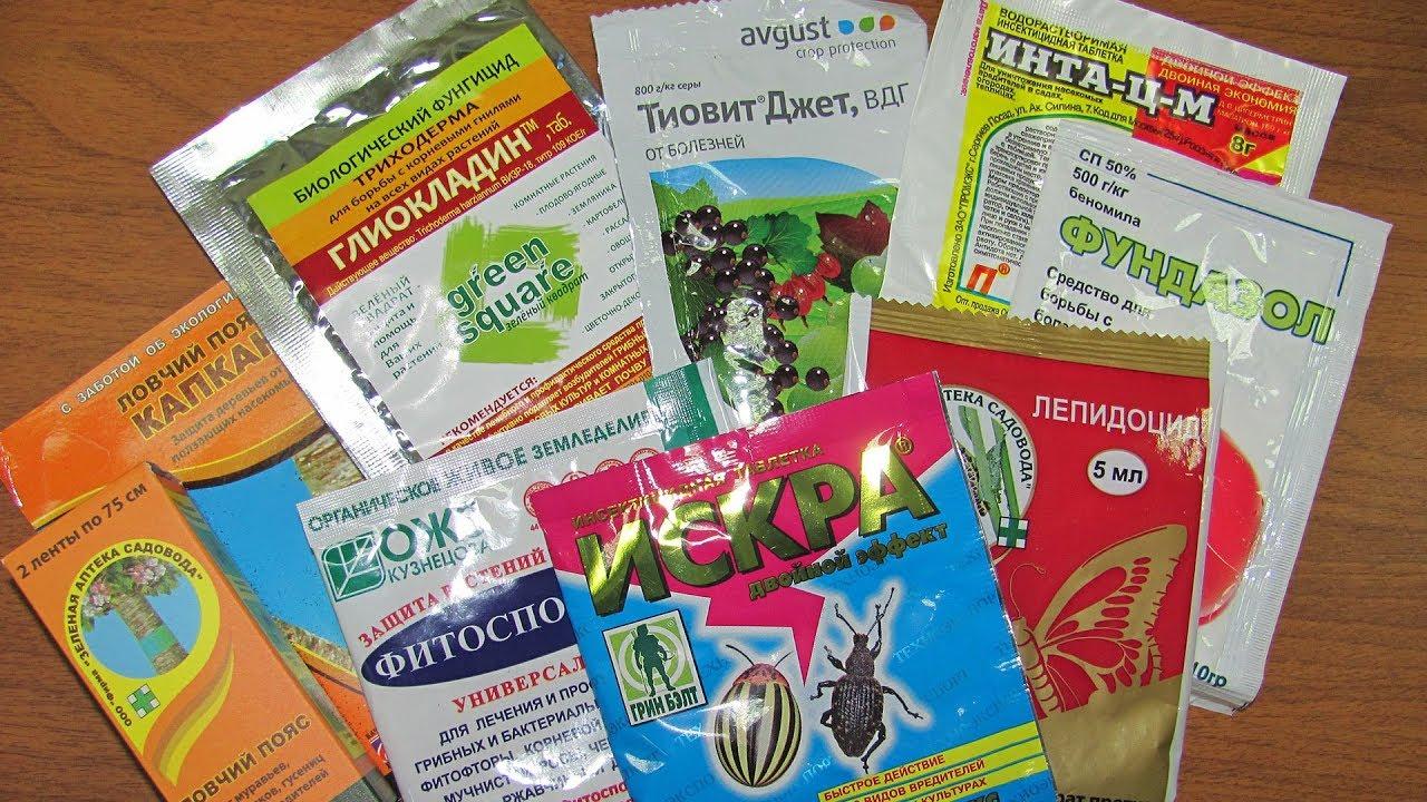 Собираем садовую аптечку  Часть 1  Препараты от насекомых