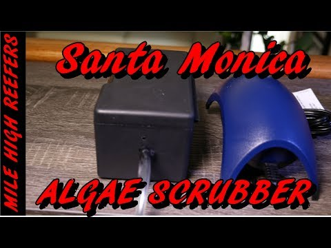 Reducing Water Changes with Santa Monica Drop Algae Scrubber