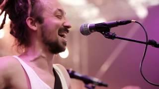 beda mit palme - Live am Woodstock der Blasmusik 2019