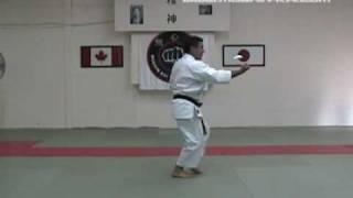 Mushin-Kai International - Junino Kata (Shito-ryu Karate)