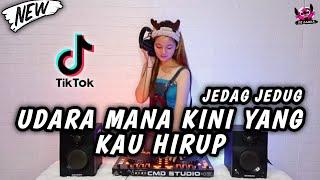 DJ UDARA MANA KINI YANG KAU HIRUP TIKTOK JEDAG JEDUG ( DJ ZAHRA X DJ MINI )