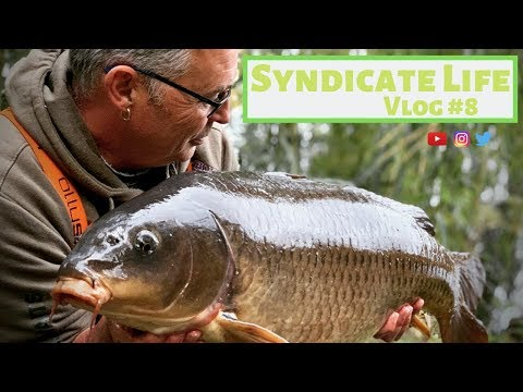Carp Fishing Syndicate Life #8