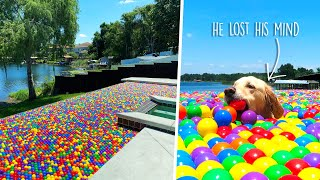FILLED OUR POOL WITH 10,000 BALL PIT BALLS! (Super Cooper Sunday #249)