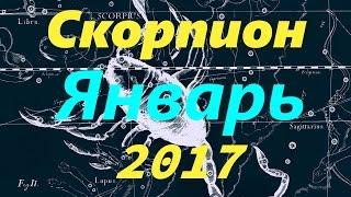 Гороскоп для Скорпиона на январь 2017 года