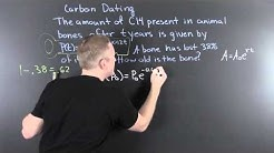 Carbon Dating an Application of Logarithms