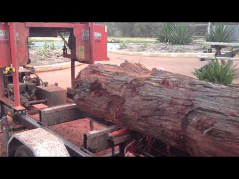 Jarrah log being milled