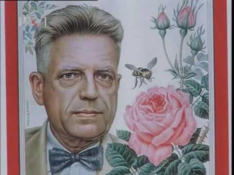 Raskrinkan Alfred Kinsey - tvorac seksualne ideologije zaosnovane na zločinačkim istraživanjima