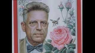 Raskrinkan Alfred Kinsey - tvorac s
