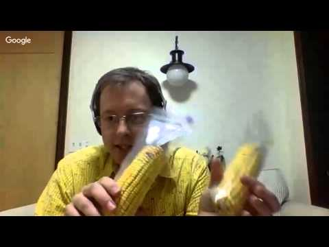 The GMO Corn Experiment Q/A