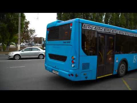 Новые автобусы: островки Москвы в Белгороде