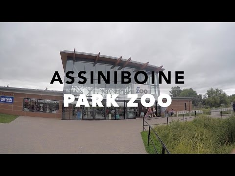 Winnipeg zoo , Assiniboine Park Zoo kids tour