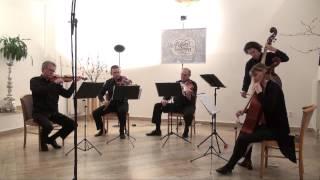 MUSICA AETERNA: Joseph Haydn: Sonata IV. Largo