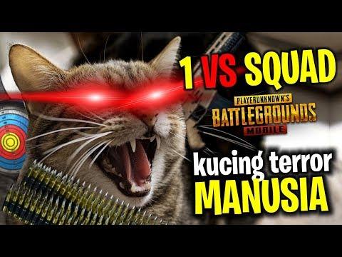 SOLO VS SQUAD KUCING MELAWAN MANUSIA | PUBG Mobile Indonesia