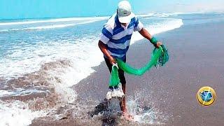 Mackerel fishing on the beach