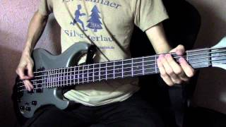 A Perfect Circle - The Outsider (Dextrila Cover) Bass