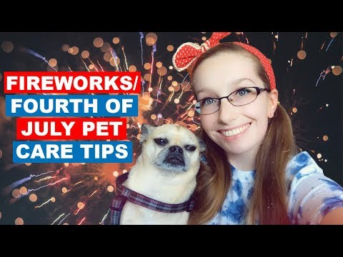 FIREWORKS/FOURTH OF JULY PET CARE & TIPS