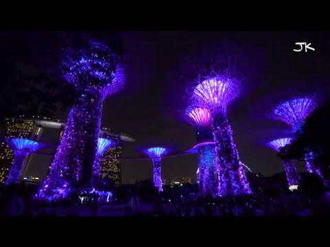 Supertree Grove Light Show At The Gardens By The Bay In Singapore - 4K Video