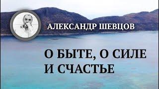 О быте, о силе и счастье | Александр Шевцов