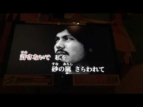 〔cover〕哀愁のカルナバル/河合その子