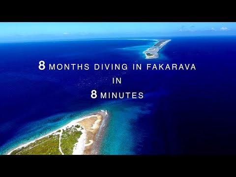 8 Months Diving In Fakarava in 8 Minutes (French Polynesia)