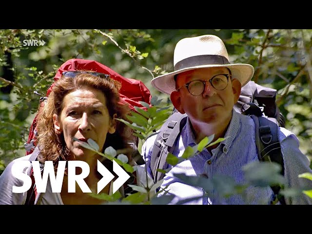 Mit Adele Neuhauser & Denis Scheck im Schönbuch | SWR Der mit dem Wald spricht