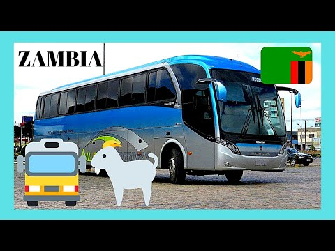 ZAMBIA: BUS STOP scenes, RURAL VILLAGE (GOAT escapes from bus cargo space!)