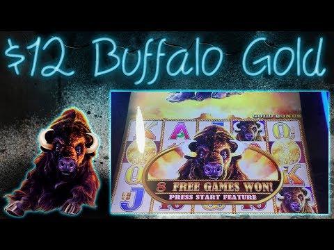 $12 Buffalo Gold Bonus!!!