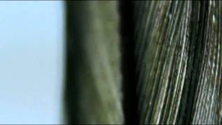 My favorite song 2010-10-15 ... Video for Between Stars by Underwor...