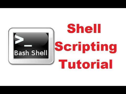Shell Scripting Tutorial in One Video