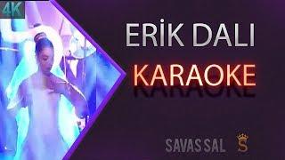 Erik Dalı Karaoke 4k