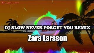 Download Mp3 Dj Slow Never Forget You Remix Tiktok | Zara Larsson