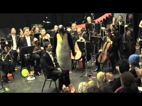 Pingvinen Bismarck og Arnulf leker stolleken