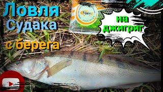 Первая рыбалка на судака Ловля судака с берега джиг риг джиг риг Весна 2021 fishing in Zander