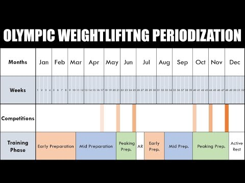 Periodization of Olympic Weightlifting Training   For Peak Performance During Competition