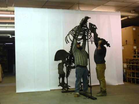 Giant Ground Sloth Skeleton Replica Time Lapse