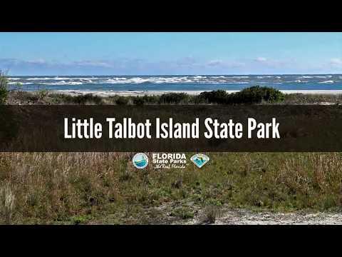 Firsthand Florida Fun: Little Talbot Island State Park