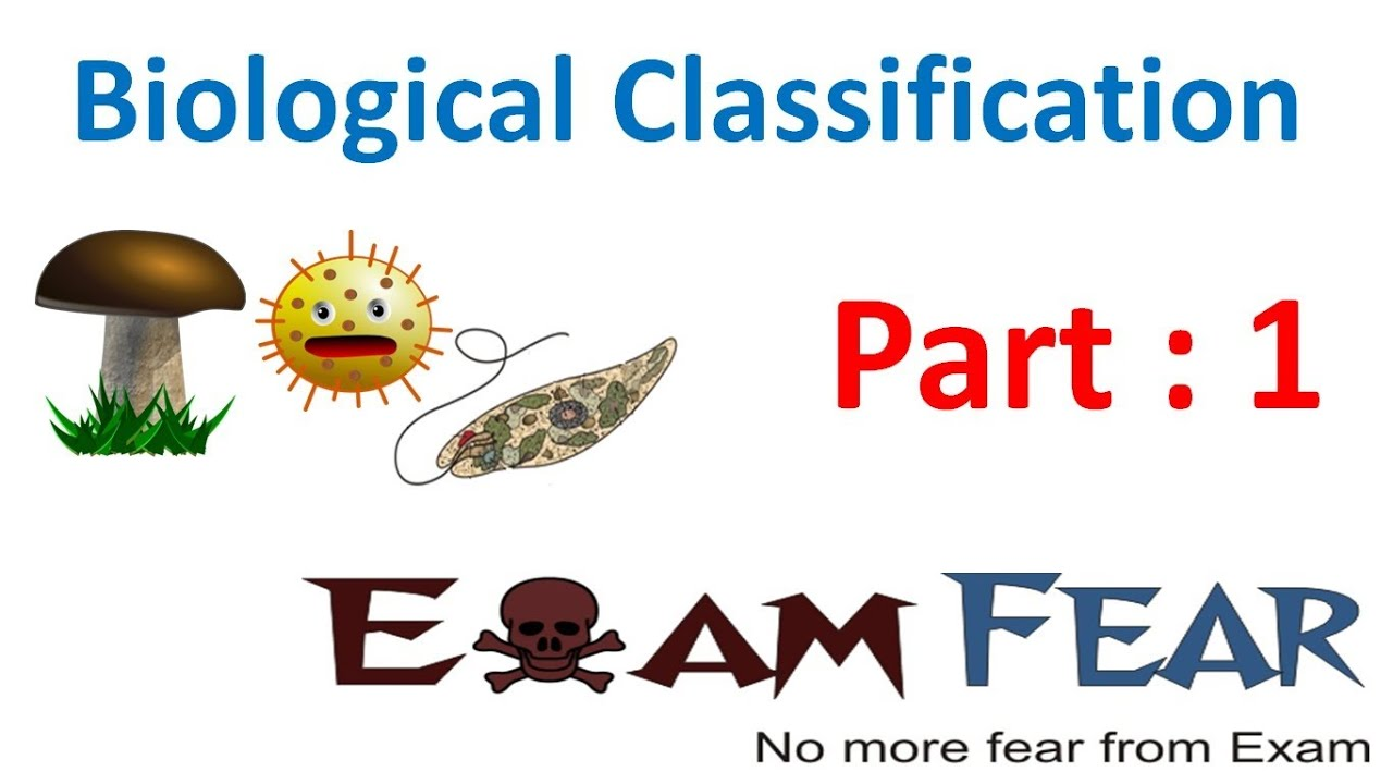 Biology Biological Classification part 1 (Introduction & Aristotle ...
