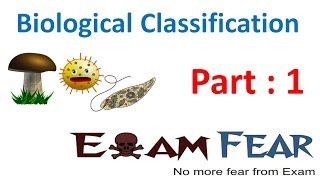 Biological Classification Biology CBSE class 11 XI