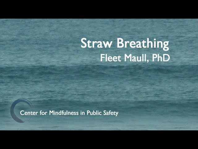 CMPS MBWR Straw Breathing