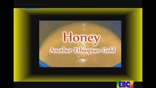 #EBC ETHIOPIA TODAY- Honey Another Ethiopan Gold September 19/2017