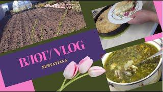 ВЛОГ Посадила севок Суп со шпинатом Королевская ватрушка Любимый рецепт хлеба
