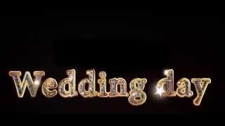 свадебные титры WEDDING DAY (любые титры, логотипы на заказ) Маргарита Щербакова