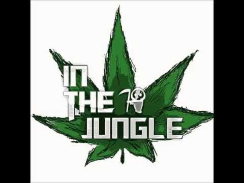 DJ LOONEY & MR TRAUMATIK (IN the jungle) D&B SET