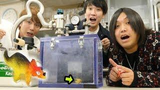 【100万円のマシン】「水で大きくなる恐竜」をたった1日でデカくしてみた!!