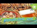 منافع و أسرار  العلك الصحراوي الصمغ العربي