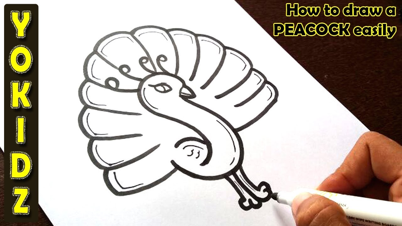 how to draw a peacock easily youtube how to draw a peacock easily