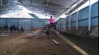 Jeździectwo moją pasją