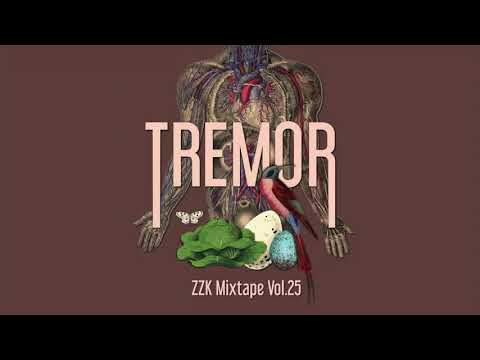 ZZK Mixtape Vol.25 - Tremor