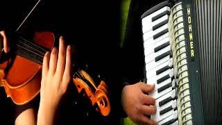 Accordian & Violin instrumental Indian Hindi nice playlist super hits non stop best