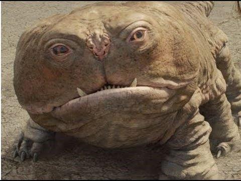 Thanh niên Vĩnh Phúc bắt được con vật lạ như trong phim